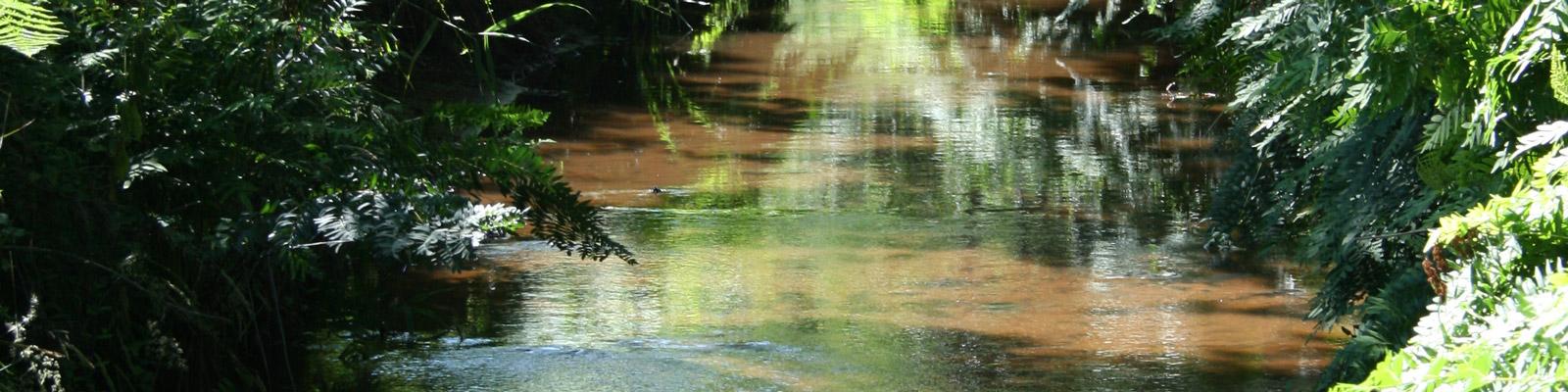 Journée mondiale des zones humides par Parc naturel régional Médoc